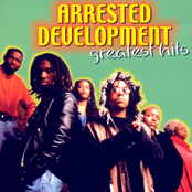 Arrested Development: Greatest Hits