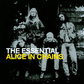 The Essential Alice in Chains Disc 1