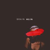 AliA: Brain