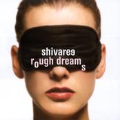 Rough Dreams