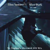 After Dark (Mr. Tophat's Alterned 303 Mix)