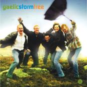 Gaelic Storm: Tree