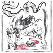 Cloud Rat: Pollinator