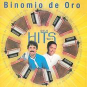 El Binomio De Oro: Solo Hits Vol. 1