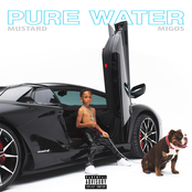 Pure Water (with Migos)