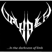 ...In The Darkness Of Limb