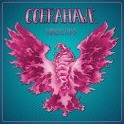 Cobrahawk: Vindictive