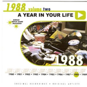Expose: A Year in Your Life: 1988, Volume Two