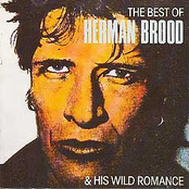 The Best Of Herman Brood & His Wild Romance