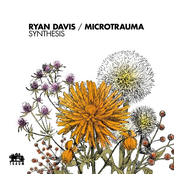 Ryan Davis: Synthesis