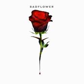 Badflower: Album Preview