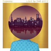 Turkuaz: Life In The City