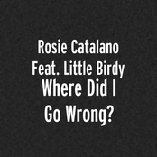 Where Did I Go Wrong? (feat. Little Birdy)