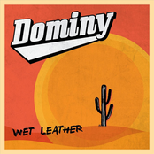 Dominy: Wet Leather