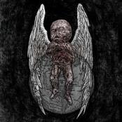 Si Monumentum Requires, Circumspive [Vinyl]