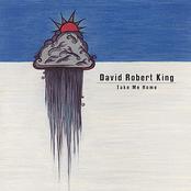 David Robert King: Take Me Home