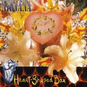 Heart-Shaped Box [Single]