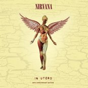Heart-Shaped Box by Nirvana