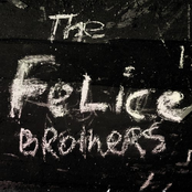 The Felice Brothers: The Felice Brothers