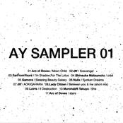 AY Sampler 01