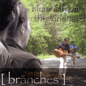 Guitar Hymns - Hymns From the Vineyard