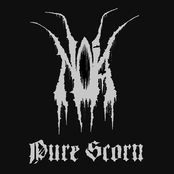 Pure Scorn