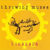Throwing Muses - Hunkpapa Artwork