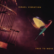 Israel Vibration - Livity in the Hood