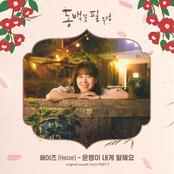 When the Camellia Blooms 동백꽃 필 무렵 (Original Television Soundtrack), Pt. 9