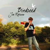 Joe Robinson: Birdseed