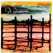 The Best of Gin Blossoms