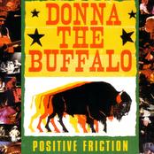 Donna the Buffalo: Positive Friction