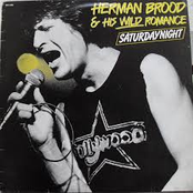 Herman Brood & His Wild Romance