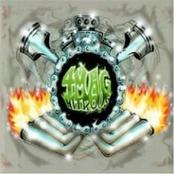 4Mag Nitrous: 4Mag Nitrous