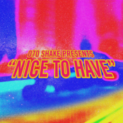 Nice to Have - Single