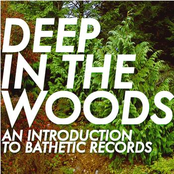 Deep In the Woods: An Introduction to Bathetic Records