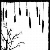 La Melancolie Des Pennes