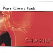 Shakin'