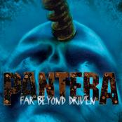 Pantera - Shedding Skin