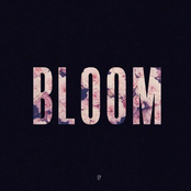Bloom - EP [Explicit]