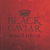 Black Caviar: Disco Drum