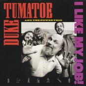 Duke Tumatoe and The Power Trio: I Like My Job!