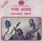 Chicago Beat
