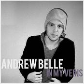 Andrew Belle: In My Veins