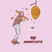 Pup: Anaphylaxis