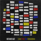 Octave Cat: Live from the Simulation