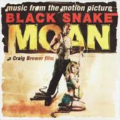 Bobby Rush: Black snake moan