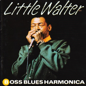 Boss Blues Harmonica