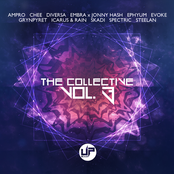 The Collective Vol. 3