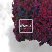 Armors: Genesis (Acoustic)